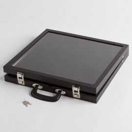Small Clear Cover Black Display Case