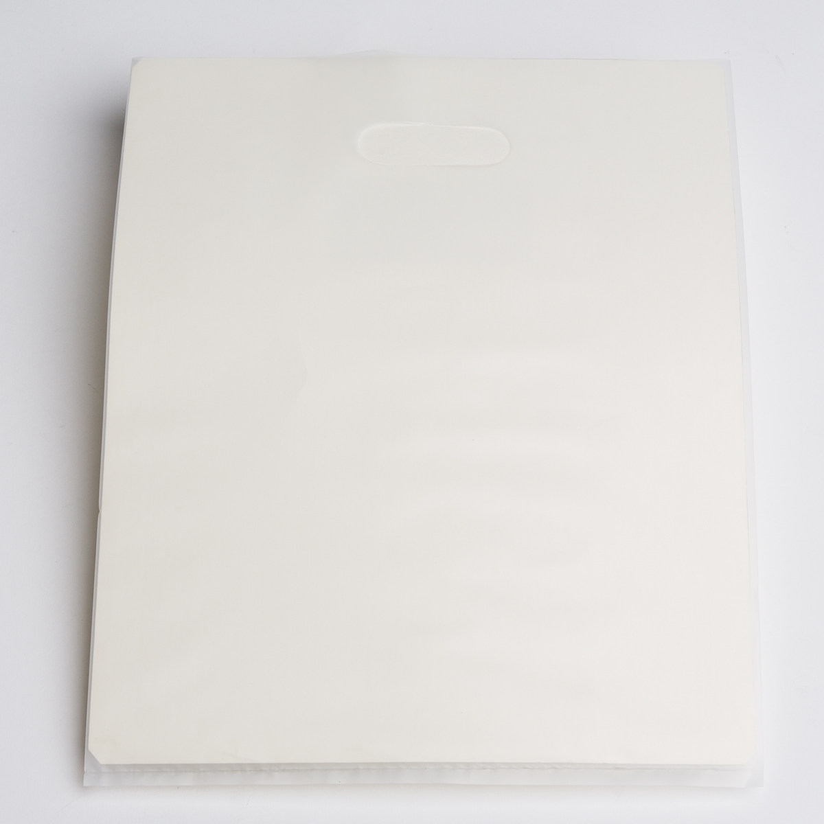 Flat Clear Plastic Shopping Bag - Medium | A&B Store Fixtures
