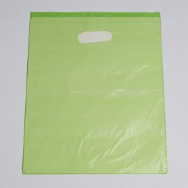 Medium Lime Low Density Plastic Bag