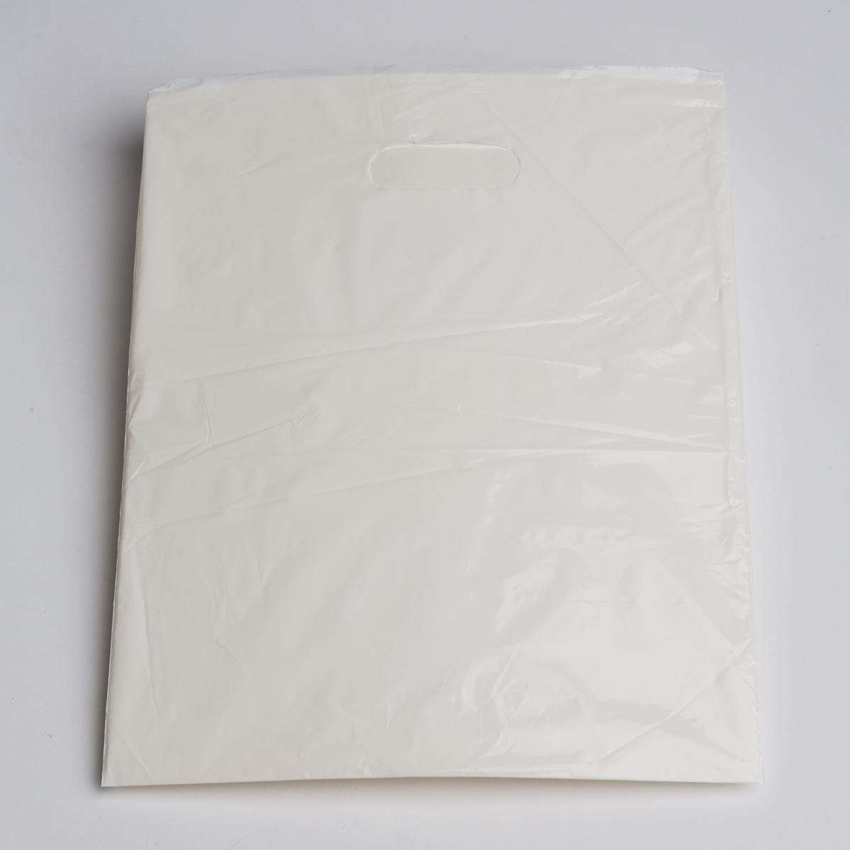 Medium White Low Density Plastic Bag